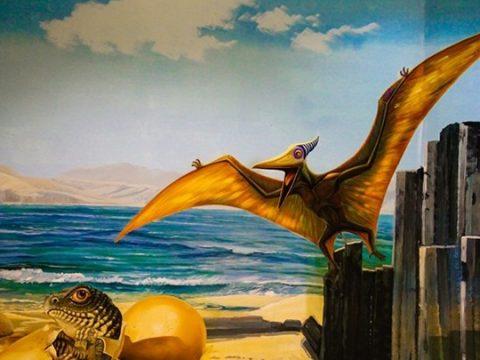 Vẽ tranh tường khu vui chơi giải trí đẹp giá rẻ nhất tại Hà Nội